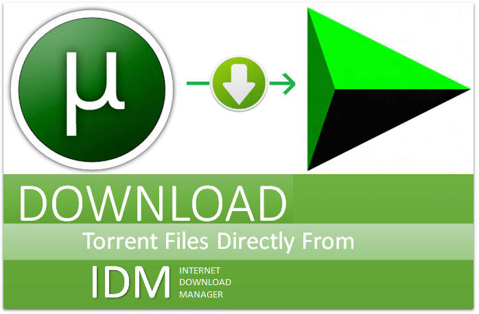 How to download torrent files with IDM